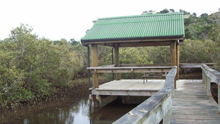 Aroha Island - mangrove hut