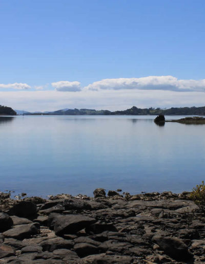 Aroha Island - waters edge