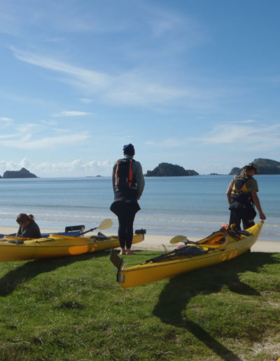 Kayak Northland - Kayaks launching
