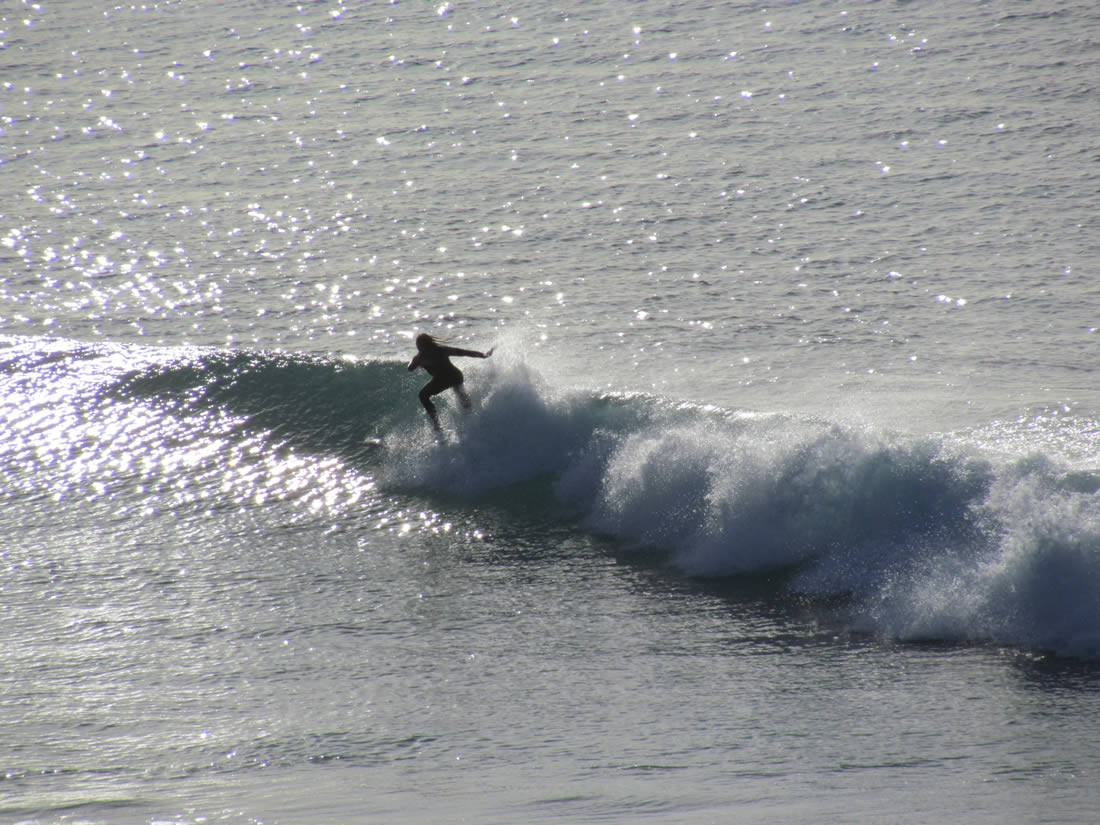 Surfing lessons and tours Northland